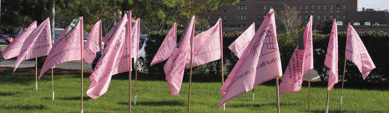 The Pink Flags